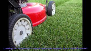 Paramount Conway Arkansas Organic Lawn Care Products