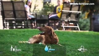 Pet Safe Lawn Fertilizer - Apply, Water, Play!